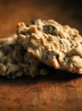 irresistible chewy oatmeal currant cookies