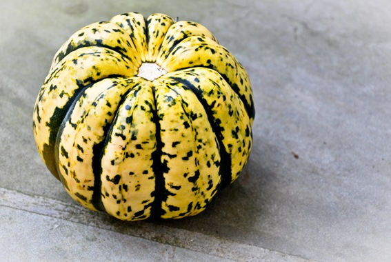 cooking-101-introduction-to-winter-squash1