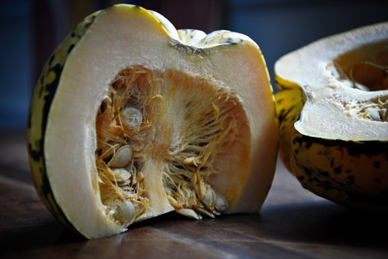 cooking-101-introduction-to-winter-squash2