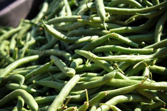farmers-market-love9