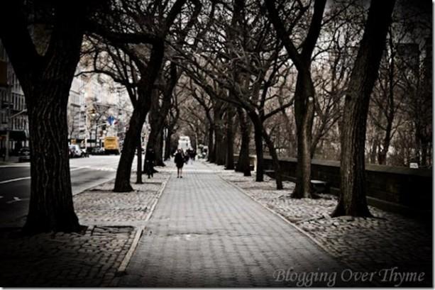 central_park2