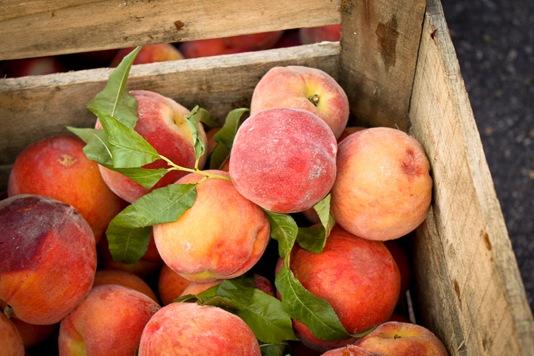 peach_yogurt_smoothie