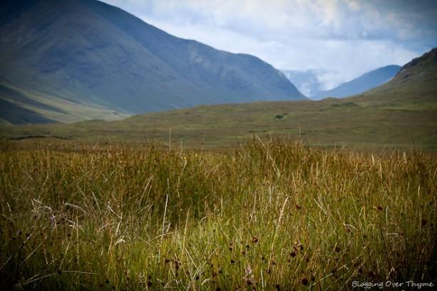 scottish_highlands2