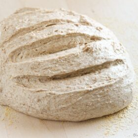 french boule bread