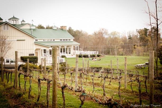 veritas winery