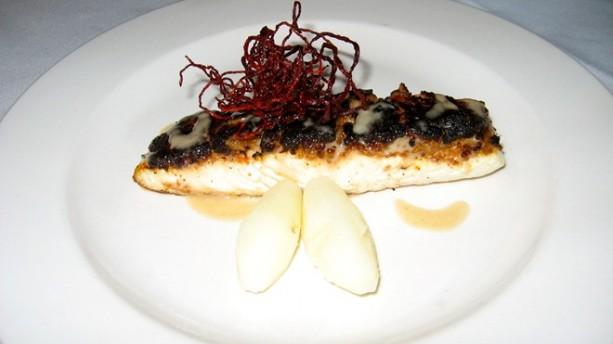 seared halibut
