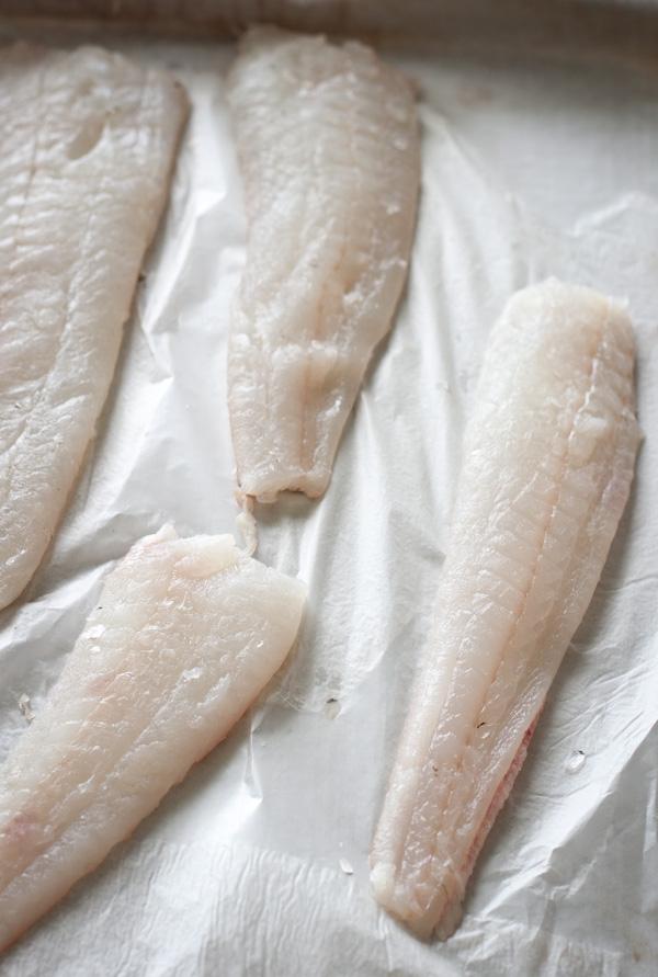 Raw Flounder Fillets