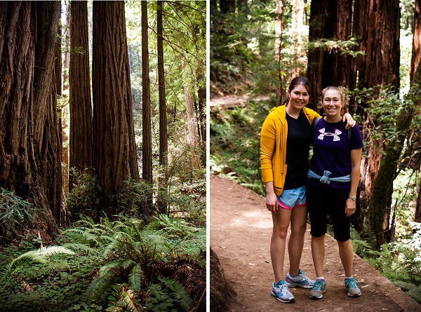Muir Woods | bloggingoverthyme.com