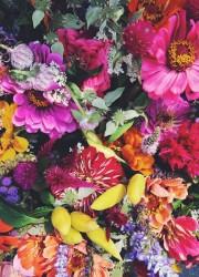 Farmer's Market Flowers | bloggingoverthyme.com