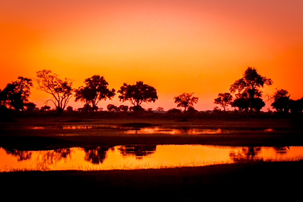 The Okavanga Delta, Bostwanav