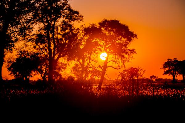 Sunrise in the Okavango Delta, Botswana