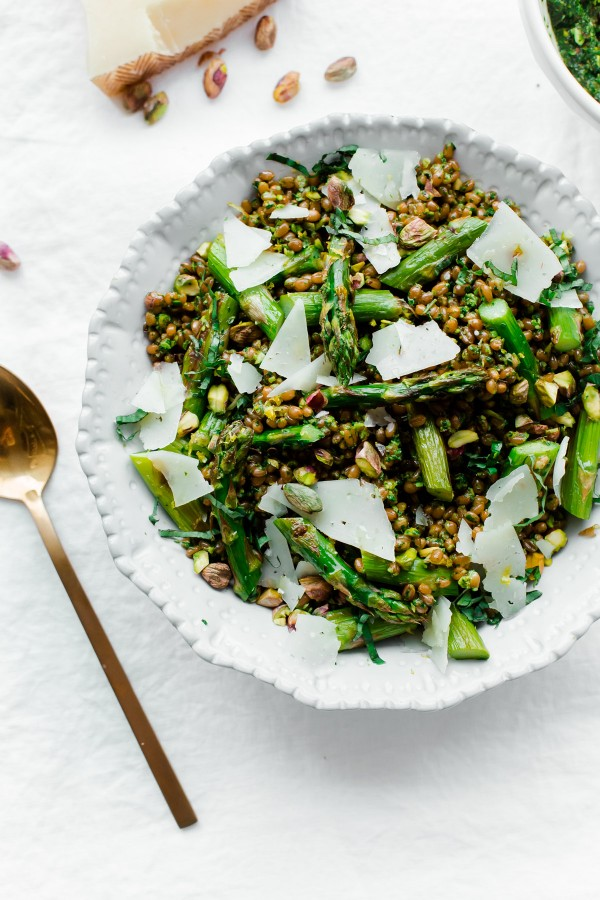 Roasted asparagus wheat berry salad with arugula pistachio pesto, basil, and shaved Manchego! A healthy and hearty springtime vegetarian main course salad.