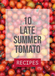 Late Summer Tomato Recipes - 10 mouth-watering, delicious recipes using fresh summer tomatoes!