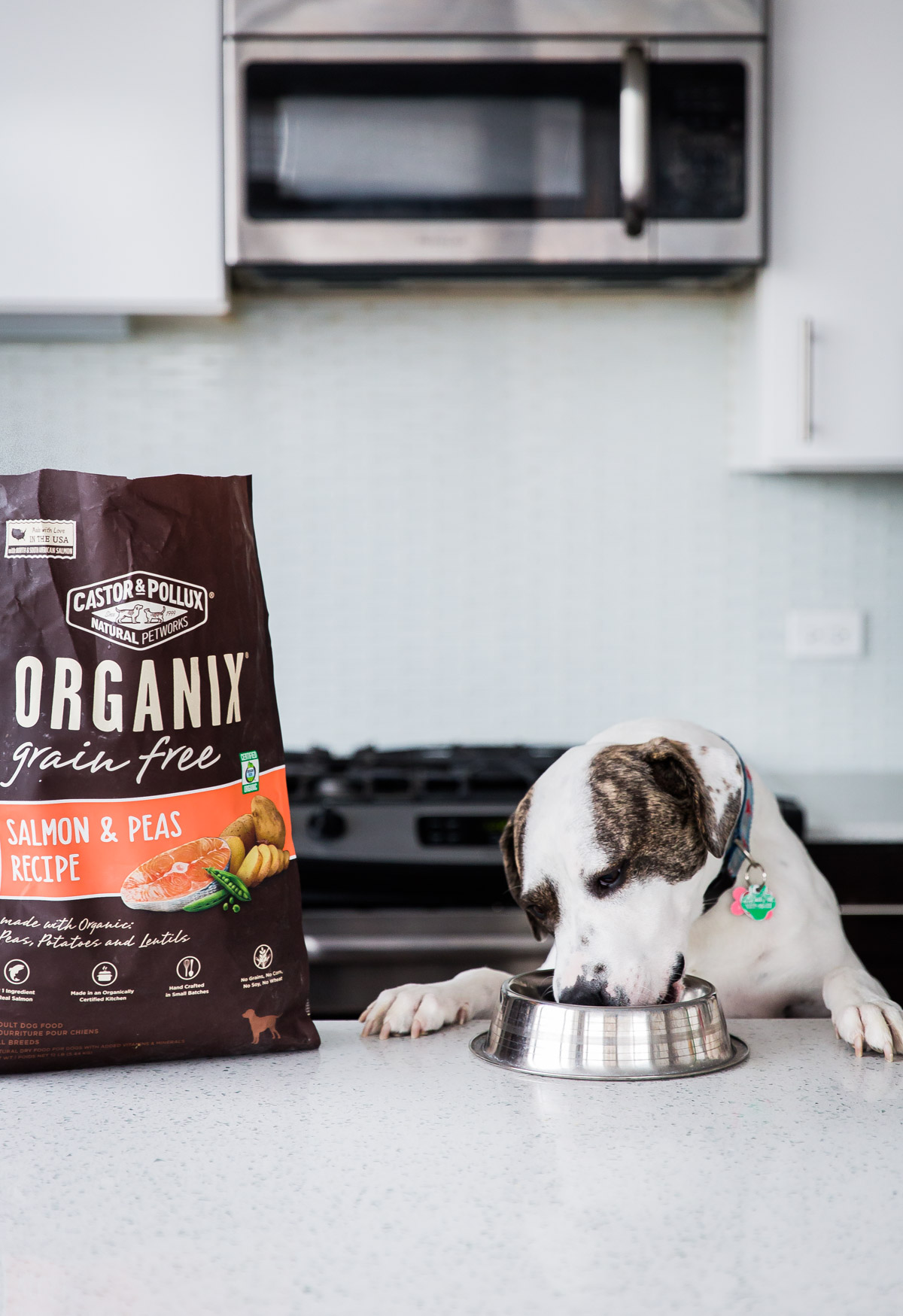 Adventures with Marley - fueled by Organix Grain-Free Dog Food