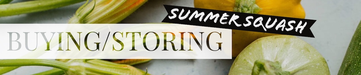 Buying and Storing Summer Squash