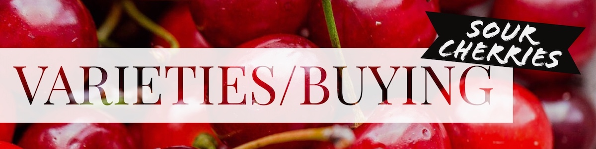 Sour Cherry Varieties
