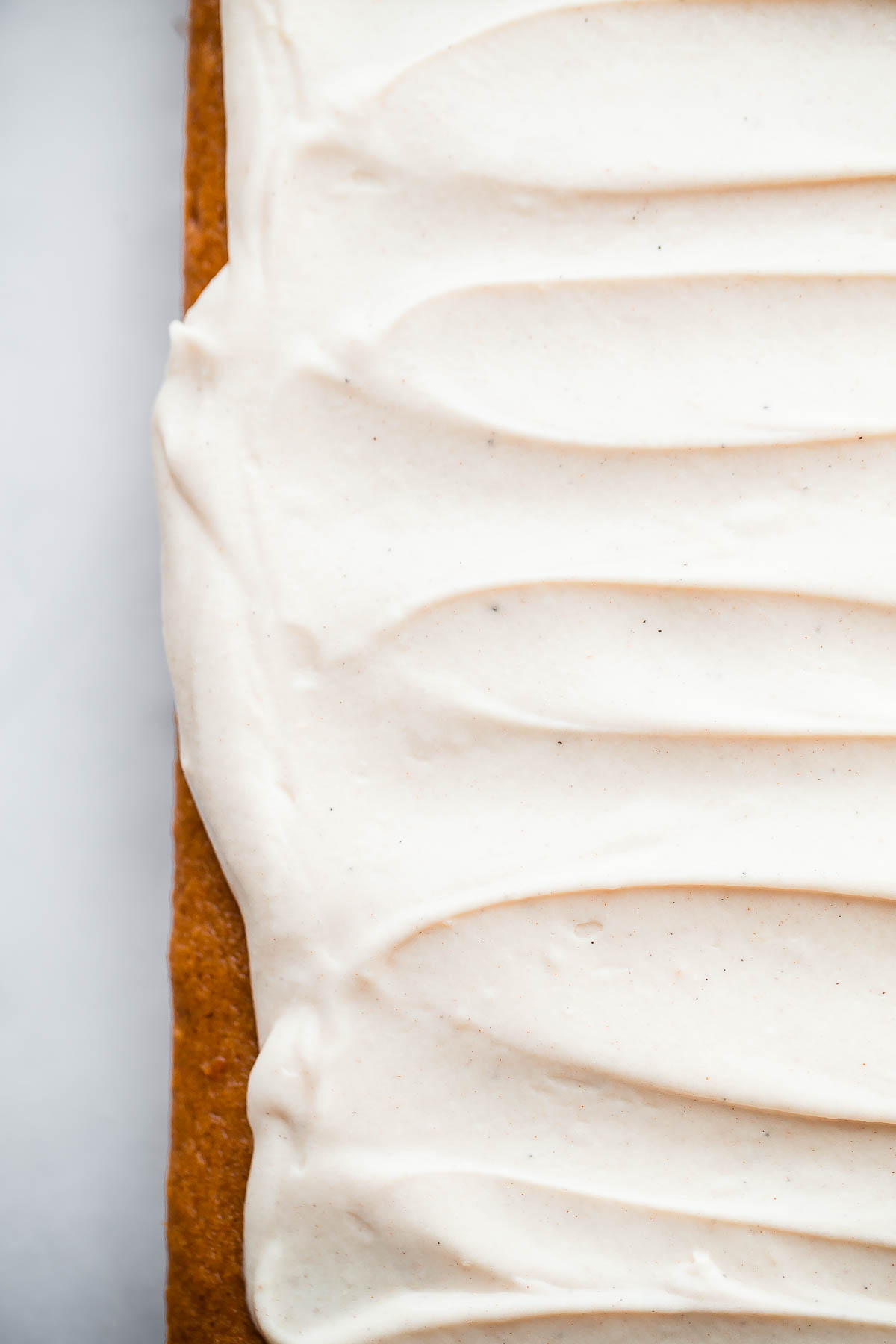 Pumpkin Sheet Cake. A RICH, decadent pumpkin cake topped with spiced cream cheese frosting!