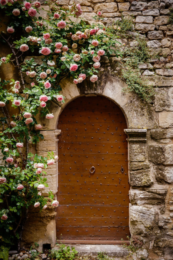 French Door with Roses Growing Around It