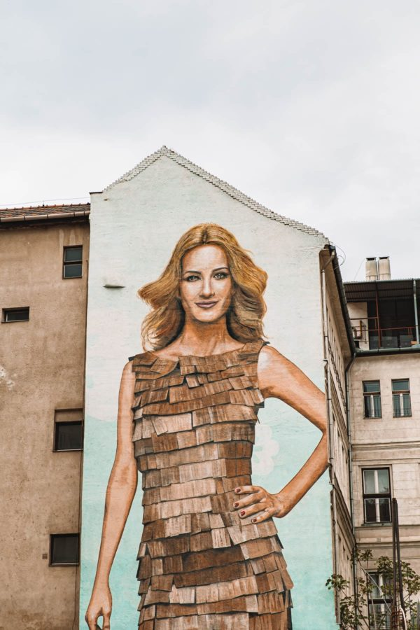 Budapest Wall Mural
