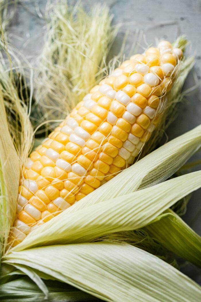 Shucked Corn Cob